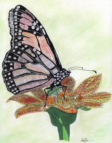 zentanglebutterfly13